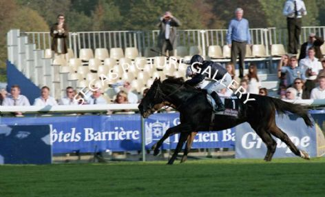Racehorse Zarkava with Jockey Christophe Soumillon